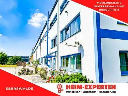 Nur 3% Maklercourtage. Große Gewerbehalle mit Bürotrakt und guter Verkehrsanbindung in Eberswalde