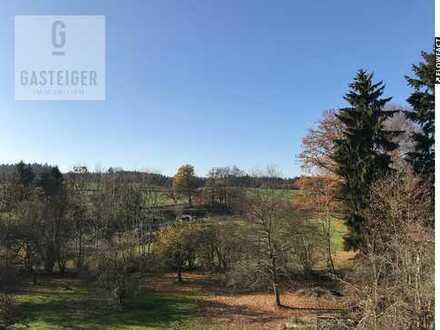 Geräumige und helle Dachgeschosswohnung im Wittelsbacher Land