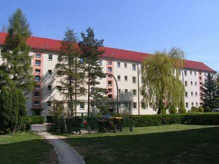 gemütliche 3-Raum-Wohnung mit Balkon im Westviertel