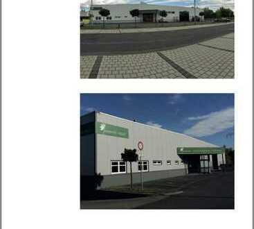 Lagerhalle mit Bürofläche zu vermieten 2.786,39 m²