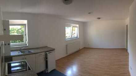 1-Zimmer-Apartment in Gaiberg
