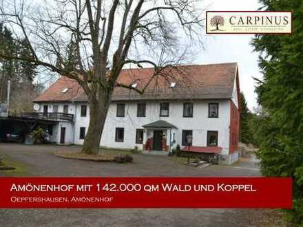 Mehrfamilienhaus mit 148.000 qm Wald und Koppel