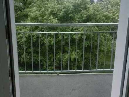 Gemütliche Singlewohnung mit Balkon in grüner Lage von Laubegast