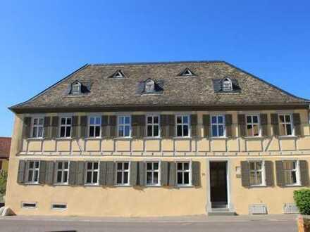 Erstbezug nach Sanierung mit EBK: freundliche 2-Zimmer-Erdgeschosswohnung in Armsheim