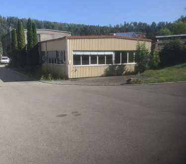 Halle für Büro, Produktion oder Lager im Gewerbepark Neckartal