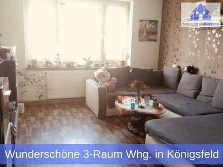** Wunderschöne 3-Raum Wohnung mit moderner Einbauküche und neuwertigem Badezimmer zu vermieten! **