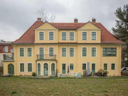 Wohnen in hist. Ambiente! Sanierte 5-Zimmerwohnung mit Terrasse und Balkon oberhalb Radebeul-Mitte