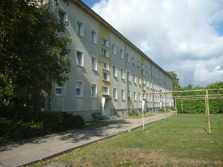 Markee - Schöne 2-Raum Wohnung in ruhiger Lage