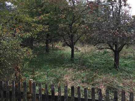 wunderschönes Gartengrundstück eingewachsen in viel Grün Gartenhaus möglich