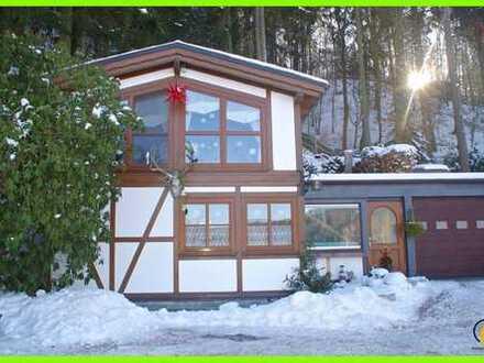 ⭐Pension mit Wohnhaus im Landschaftschutzgebiet an Talsperre mitten im Wald
