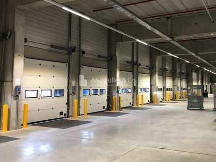 """BAUMÜLLER & CO."" - 10.000 m² Hallenfläche - Logistik-Neubau"