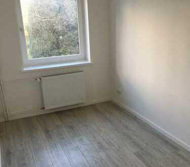 Frisch sanierte Wohnung in Horn