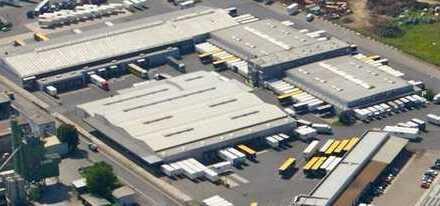 Attraktive Hallen- und Logistikfläche!!!