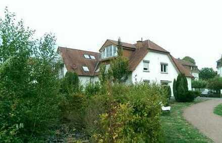 2-Zimmer Apartment in zentraler Lage Bad Waldliesborns