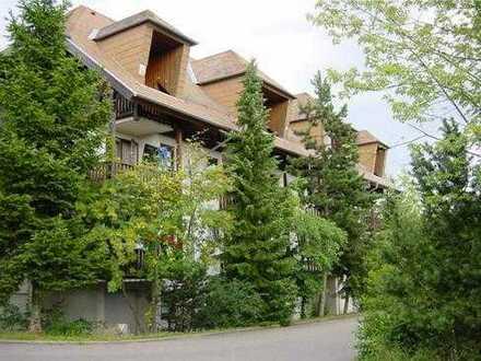 Befristet bis 31.12.2020: 1 Zi-Apartment in Bad Liebenzell - direkt vom Eigentümer