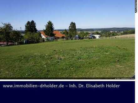 Projektierte Reitanlage, Kauf, Uttenweiler