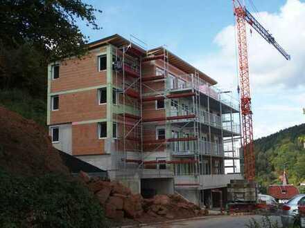 Erstbezug mit Balkon: schöne 4-Zimmer-Wohnung in Hirschhorn (Neckar)