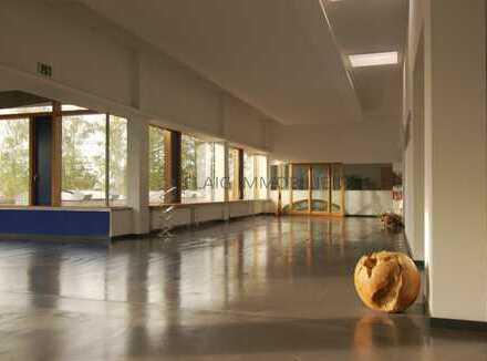 PROVISIONSFREI - Attraktive Büroflächen in gesuchter Lage in Speyer - 280 m² bis 400 m²