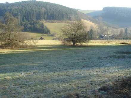 10.600m² Grundstück mit herrlichem Blick über das Mossautal bei Erbach/Odenwald