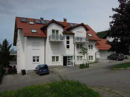 Sehr schöne, helle 2-Zimmer-Wohnung in Wald-Michelbach