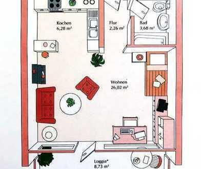 1 Zimmer Apartment in Waldkirch