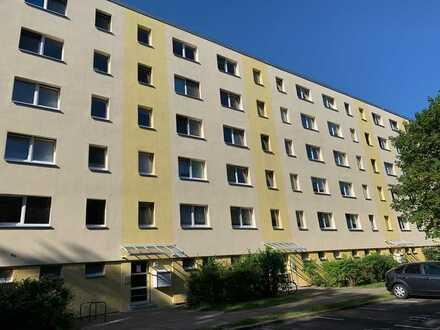 3-Zimmer-Wohnung am Waldrand ruhig gelegen am Flakensee