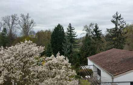 Lichtdurchflutete modernisierte 1-Zimmer-DG-Wohnung mit Seeblick in LU Gartenstadt