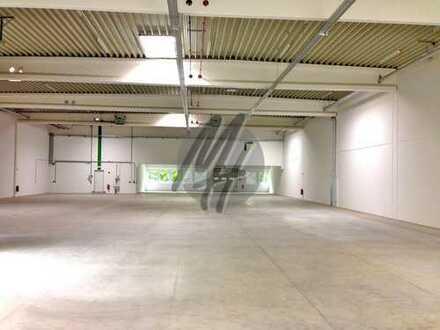 KEINE PROVISION ✓ VIELSEITIG NUTZBAR ✓ RAMPE ✓ Lagerflächen (550 m²) zu vermieten