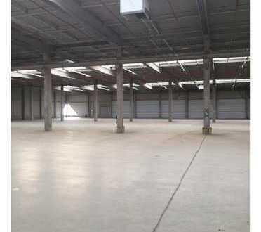 Attraktive Lager- und Produktionshalle | Sprinkleranlage | tagesbelichtet | ebenerdig