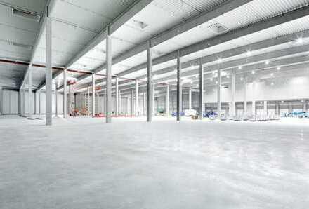 """""""BAUMÜLLER & CO."""" - 40.000 m² NEUBAU Logistikfläche - Teilflächenanmietung möglich"""