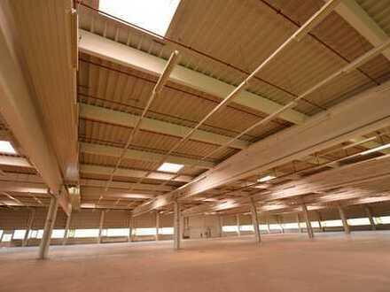 Produktionshallen - Lagerhallen in Bischofswerda bei Dresden