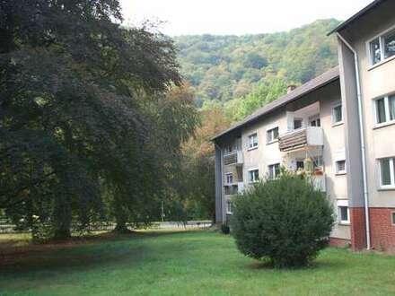 Frisch renovierte 3 ZKB-Wohnung im 2.OG. mit Balkon und Blick ins Grüne