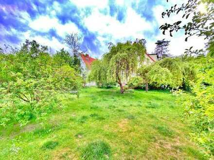 Erstklassiges 5-Zi-Einfamilienhaus auf Traumgrundstück in guter Lage von Zehlendorf