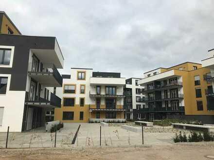 Neuwertige Wohnung mit zwei Zimmern Terasse und Privatgarten in Kehl