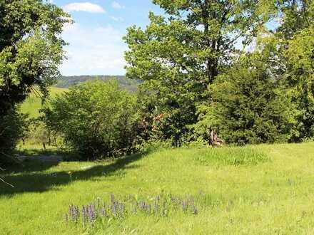 Schönes Baugrundstück in Oberzent, Ortsteil Rothenberg, mit herrlichem Fernblick zu verkaufen
