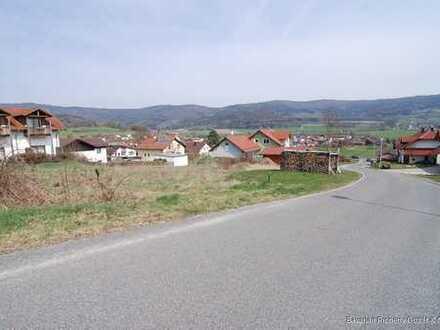 Landkreis Cham / Gleißenberg: Baugrundstück Nr. 2