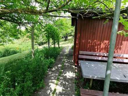 Obstbaum Garten mit Hütte und Wasser