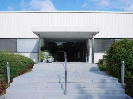 Großzügiges Büro / Praxisräume mit breiter Fensterfront