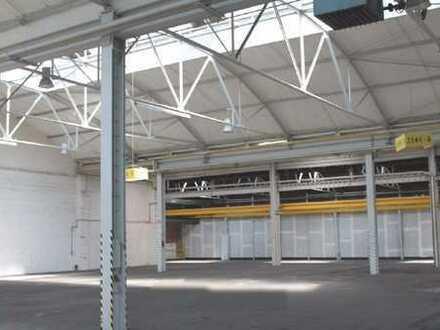 Großflächige Lager- und Produktionshalle mit zwei Stahlrolltoren