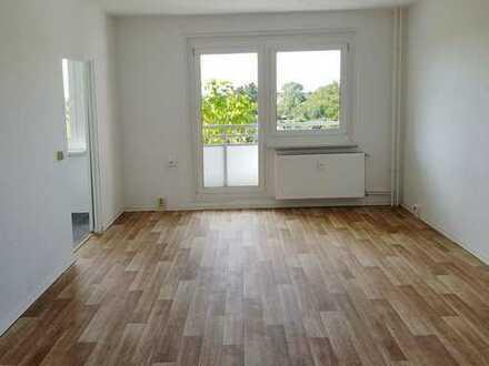 Bild_Großzügige frisch renovierte 1-Raum-Wohnung