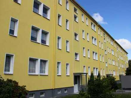 Toller Ausblick! - Sanierte 2-Raum-Wohnung mit Balkon im Wasserturmgebiet zu vermieten
