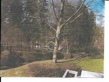 Ruhige 2-Zimmer-Wohnung in Starnberg mit Blick ins Grüne