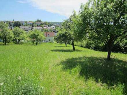 Eberstadt bei Heilbronn Bauplatz in den Weinbergen, 1208qm Grund, nur Wein-oder Obstbauern