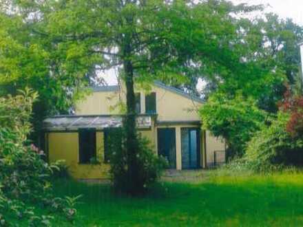 Archtektenhaus in Waldrandnähe