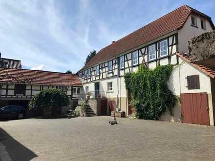 Tolle sanierte 5-Zimmer Wohnung in Hofreite: Terrasse, Blick ins Grüne und EBK in Büdingen- Calbach