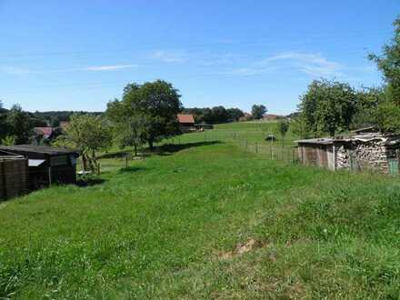 2 Häuser - 1 Preis - viel Potenzial – ausbaubares EFH und Ferienhaus – Garage – Pferdekoppelekoppel