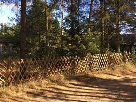 Grünheide, Kagel nahe Erkner schönes Waldgrundstück