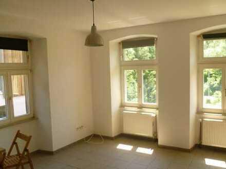 Originelle 1 Zimmer -Wohnung in ehemaliger Mühle