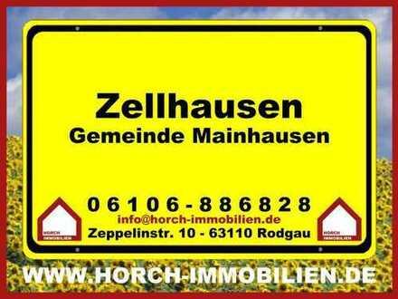 (((CHIC+MODERN))) 1,5 Zimmer-Whg., Mainhausen(Zellhausen)