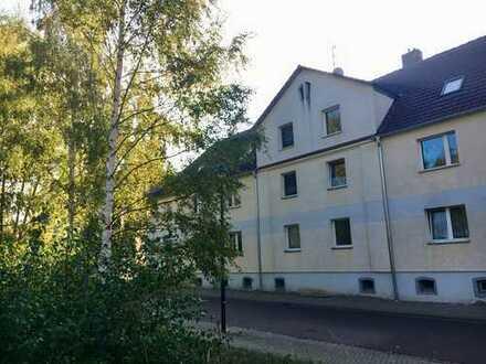 Helle 2 Raum Wohnung im Grünen